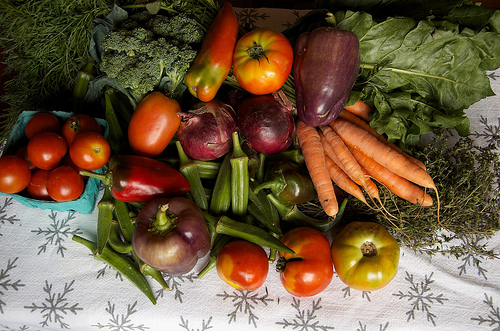 The Benefits of Growing Your Own Organic Vegetable Garden